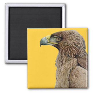 Tawny Eagle 2 Inch Square Magnet
