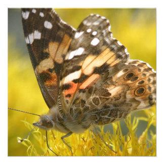 Tawny Emperer Butterfly Invitations
