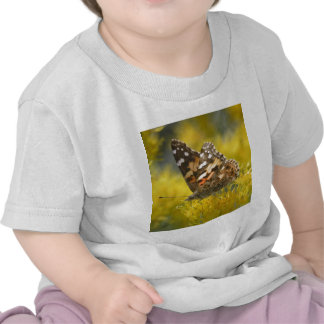 Tawny Emporer Butterfly Baby T-Shirt