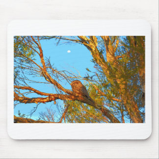 TAWNY FROGMOUTH ART QUEENSLAND AUSTRALIA MOUSE PAD