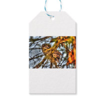 TAWNY FROGMOUTH OWL AUSTRALIA ART EFFECTS GIFT TAGS