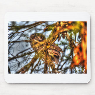 TAWNY FROGMOUTH OWL AUSTRALIA ART EFFECTS MOUSE PAD