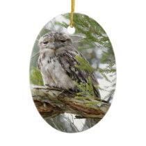 TAWNY FROGMOUTH OWL RURAL QUEENSLAND AUSTRALIA CERAMIC ORNAMENT