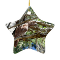 TAWNY FROGMOUTH OWL RURAL QUEENSLAND AUSTRALIA CERAMIC ORNAMENT