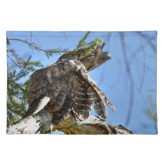 TAWNY FROGMOUTH OWL RURAL QUEENSLAND AUSTRALIA PLACEMAT