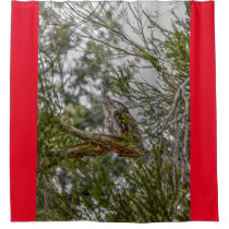 TAWNY FROGMOUTH OWL RURAL QUEENSLAND AUSTRALIA SHOWER CURTAIN