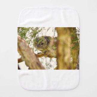 TAWNY FROGMOUTH QUEENSLAND AUSTRALIA BURP CLOTH