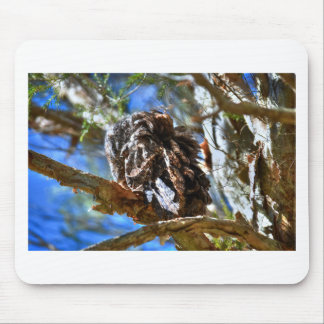 TAWNY FROGMOUTH RURAL QUEENSLAND AUSTRALIA MOUSE PAD