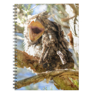 TAWNY FROGMOUTH RURAL QUEENSLAND AUSTRALIA NOTEBOOK