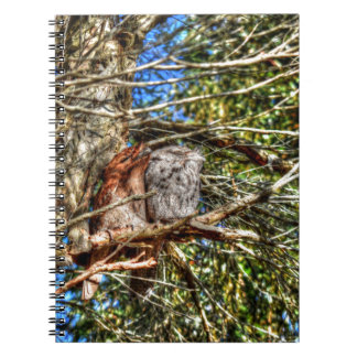 TAWNY FROGMOUTHS WITH ART EFFECTS AUSTRALIA NOTEBOOK