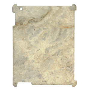 Tawny Gold Streaked marble stone finish Cover For The iPad 2 3 4