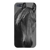 Tawny horse iPhone SE/5/5s case