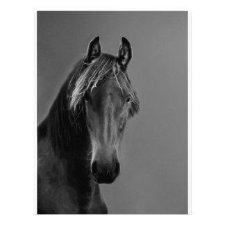 Tawny horse customized letterhead