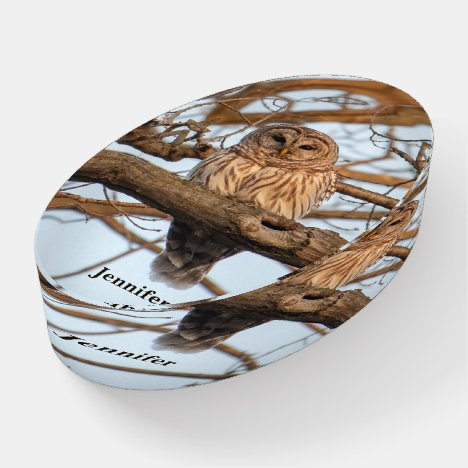 Tawny Owl Customize Name Personal Greeting Glass Paperweight