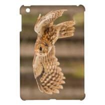 Tawny Owl in flight. iPad Mini Covers