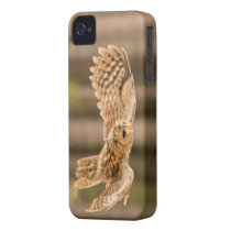 Tawny Owl in flight. iPhone 4 Cover