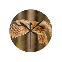 Tawny Owl in flight. Round Clock