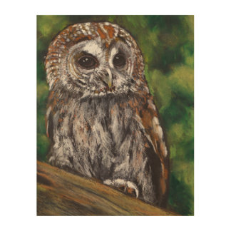 Tawny Owl: Original Oil Pastel Art