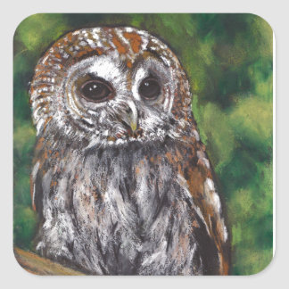 Tawny Owl: Original Oil Pastel Art Square Sticker