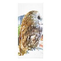 Tawny owl painted with watercolors rack card