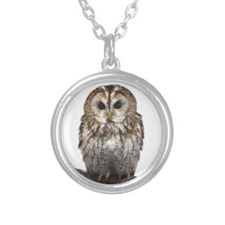 Tawny Owl Silver Plated Necklace