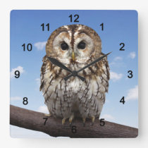 Tawny Owl Square Wall Clock
