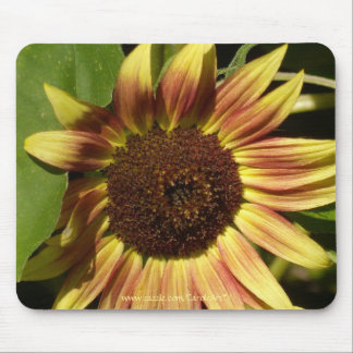 Tawny Pink Sunflower 2 Mouse Pad