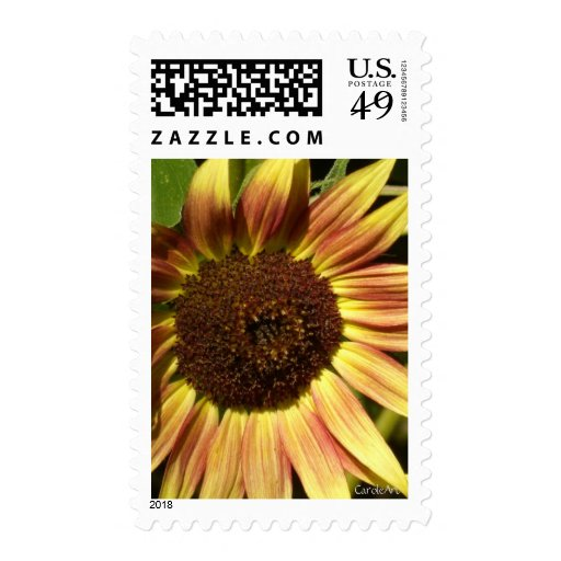 Tawny Pink Sunflower Postage