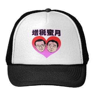 Tax increase honeymoon hats