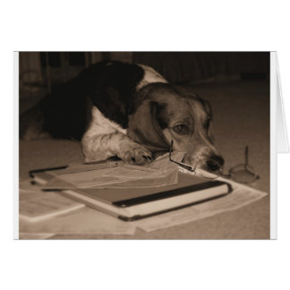 Taxes Can Wait - Beagle CPA  greeting card