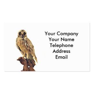 Taxidermy de un búho tarjetas de negocios