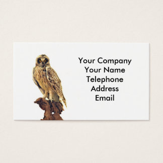 Taxidermy of an Owl Business Card