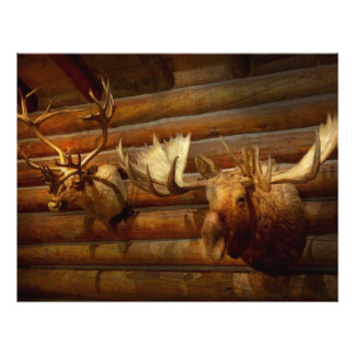 Taxidermy - The hunting lodge  Flyer