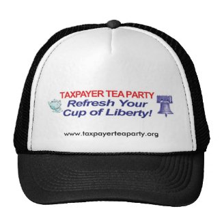 Taxpayer Tea Party Hat hat