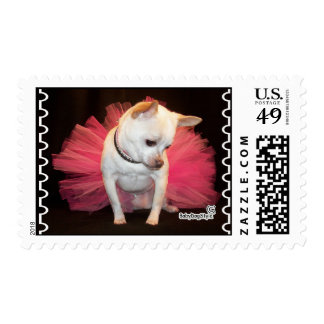 Taylor Tutu Stamp