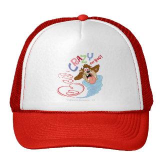¡TAZ™ loco para usted! Gorras De Camionero