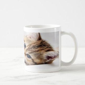 Taza 1 del diseño del gato de la sublimación del