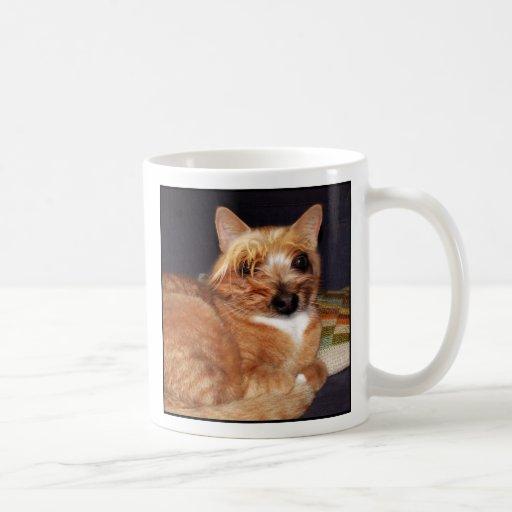 Taza #1 del gato de Yorkshire