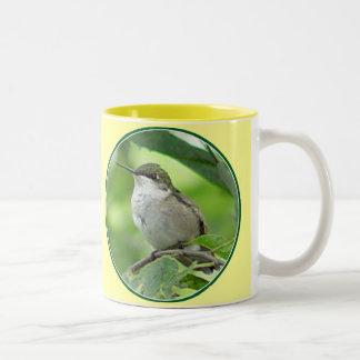 Taza 3 del colibrí