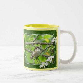 Taza 4 del colibrí