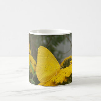 Taza amarilla de la mariposa
