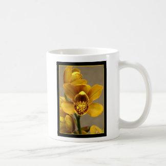 Taza amarilla de la orquídea