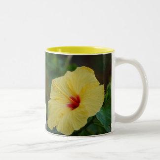 Taza amarilla del hibisco