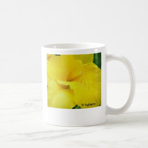 Taza amarilla del lirio de Canna