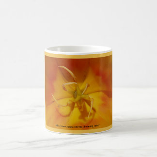 Taza amarilla y anaranjada del tulipán
