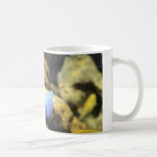 Taza amarilla y azul de los pescados del filón de