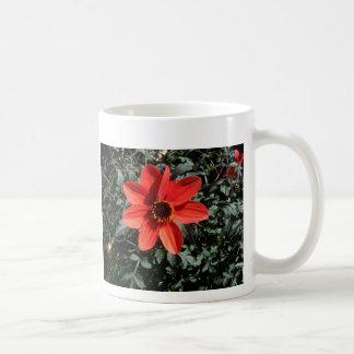 Taza anaranjada de la flor