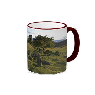 Taza antigua del acuerdo de Dartmoor
