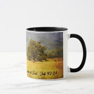 Taza - árbol de la ensenada de Cades - todavía