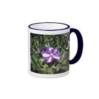 Taza azul/blanca de la violeta africana del